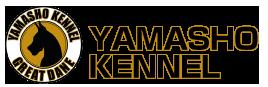 グレートデン子犬販売 | Yamasho(ヤマショウ)ブログ